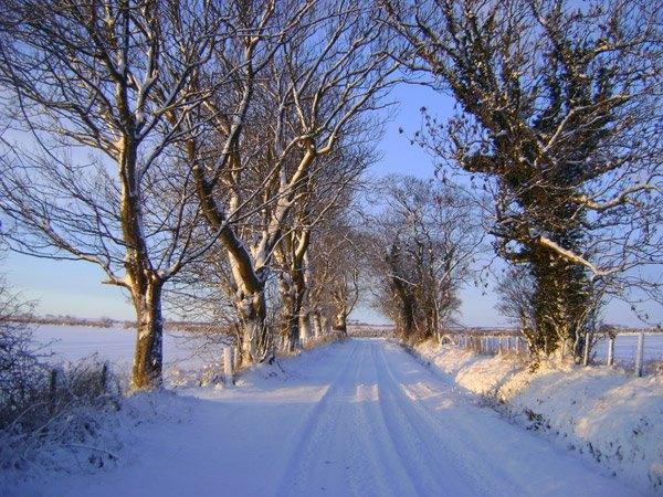 19-Dec-snowy-track