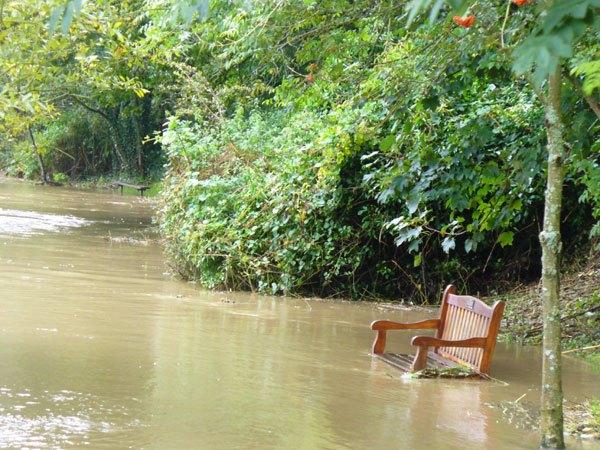 flooded-path-Warkworth