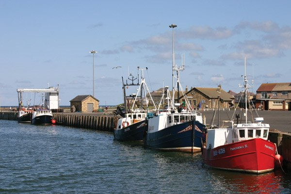 Fishing-boats-(AW)
