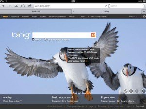 Bing-RSPB-Coquet-Island1