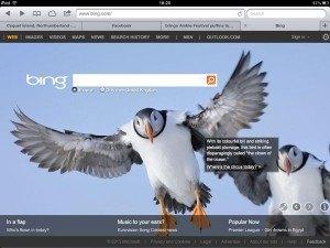 Bing-puffin-circus-link