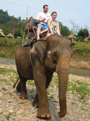 on-elephant