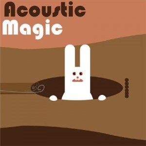 acoustic-magic