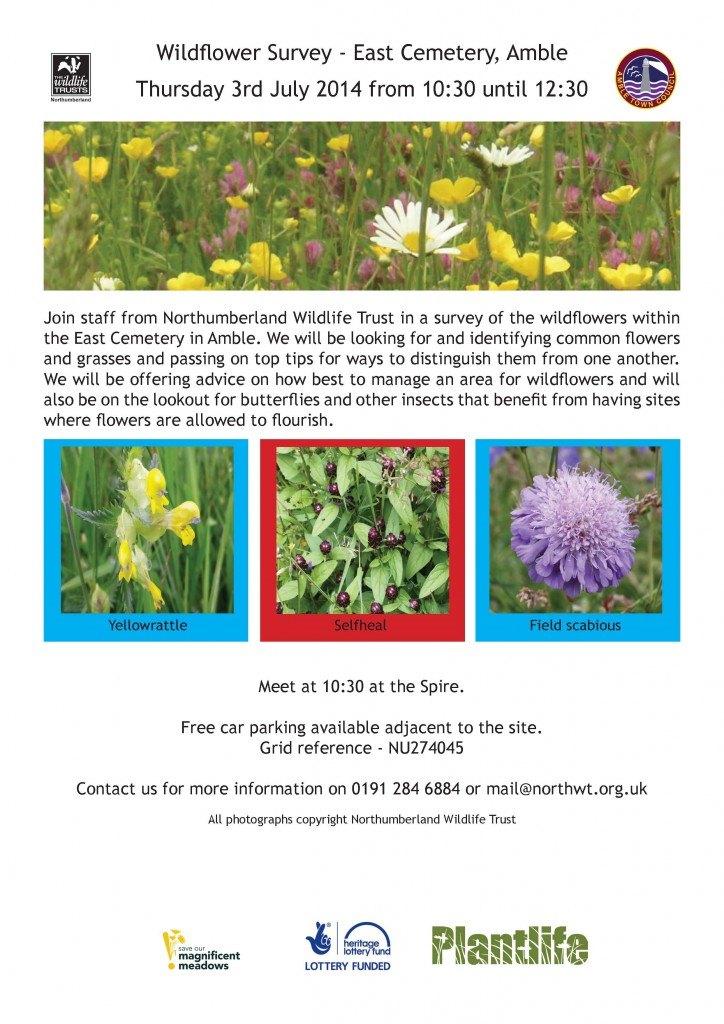 wildflower survey
