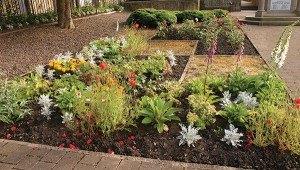 flowerbed-w