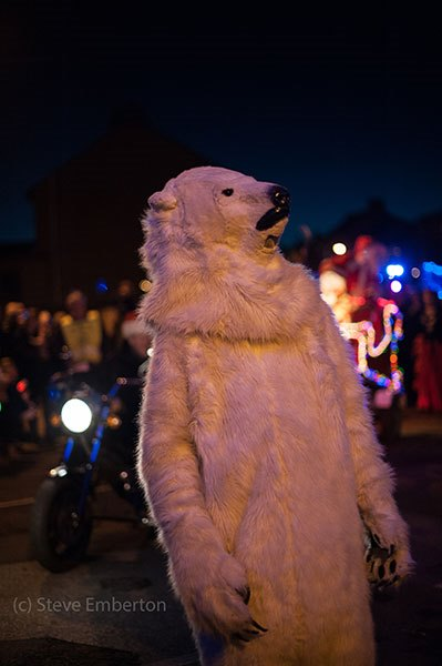 Polar-Bear-SE