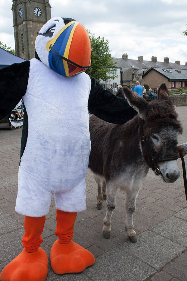 Tommy-and-Nellie-the-donkeyAW
