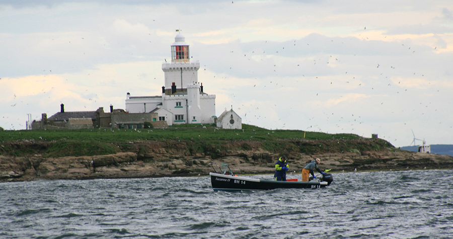 coble-fishing-off-Coquet-Island