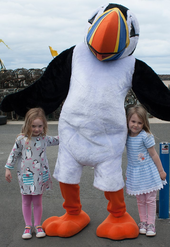 Little-girl-in-puffin-dress-AW