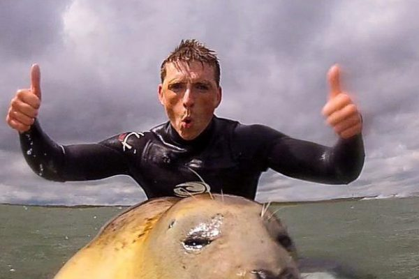 Local surfers get world's seal of approval