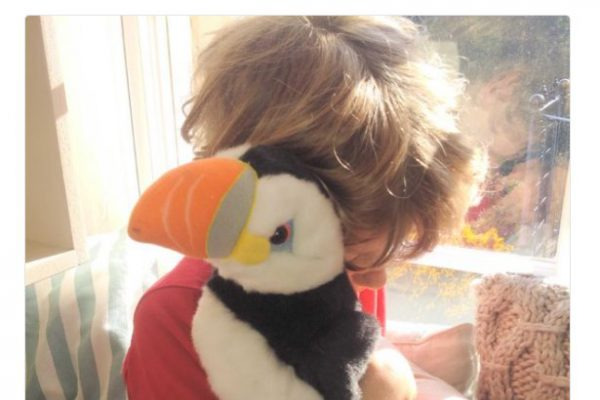 Lost puffin brings bestselling author to Festival