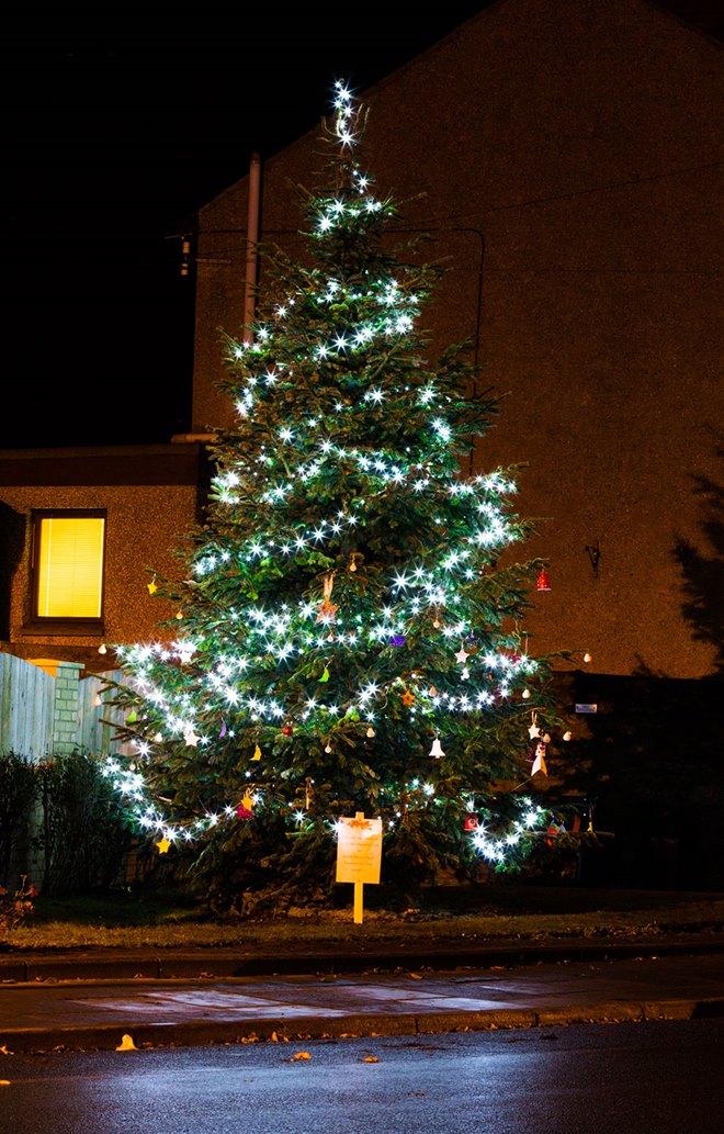 christmas-tree-from-amblebizclub-am